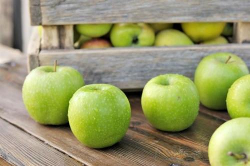 Твердые сорта яблок. Зеленые яблоки: лучшие сорта с названиями и фото (каталог)